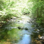 Beaver Brook at Kittatinny Campground tent camping